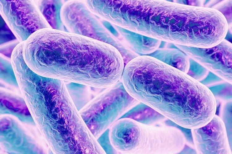 Afinal, o que é resistência bacteriana?